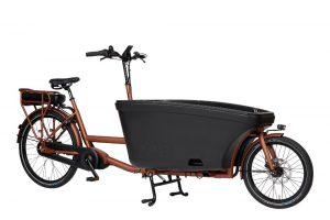 vélo cargot électrique